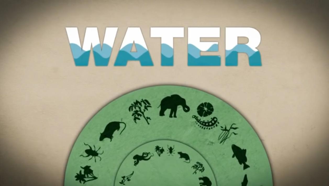 Water-is-very-important.jpg