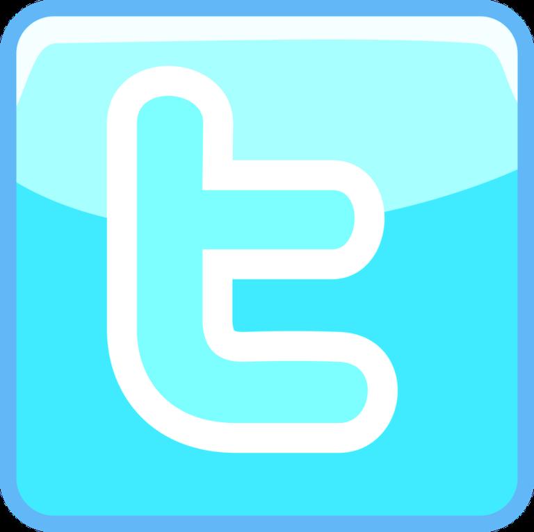 logo_twitter_white.png