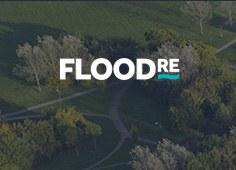 Floodre.jpg