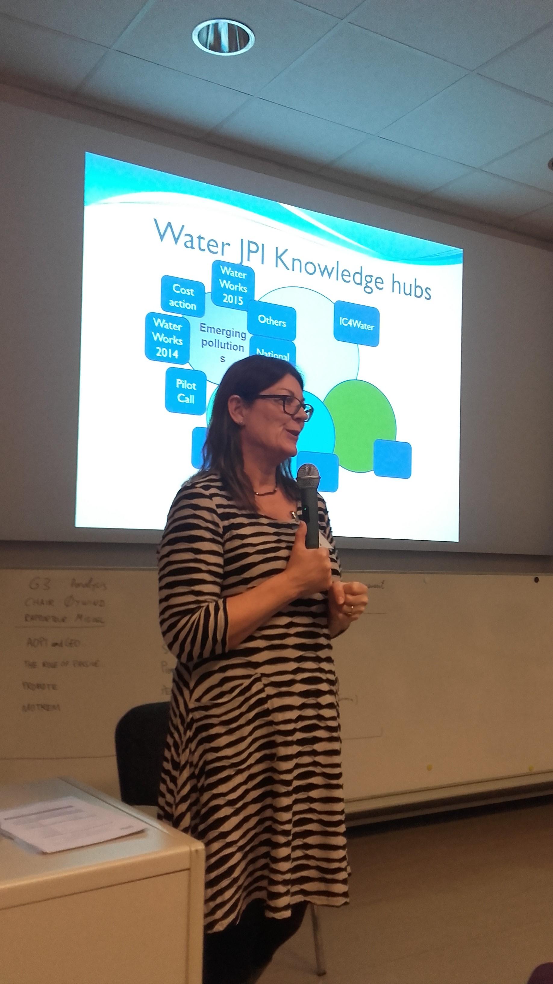 Vienna Know.Hub Leader Kristina Laurell