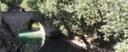 fiume sentino - basilica di san vittore - marche